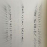IMG_1578_800